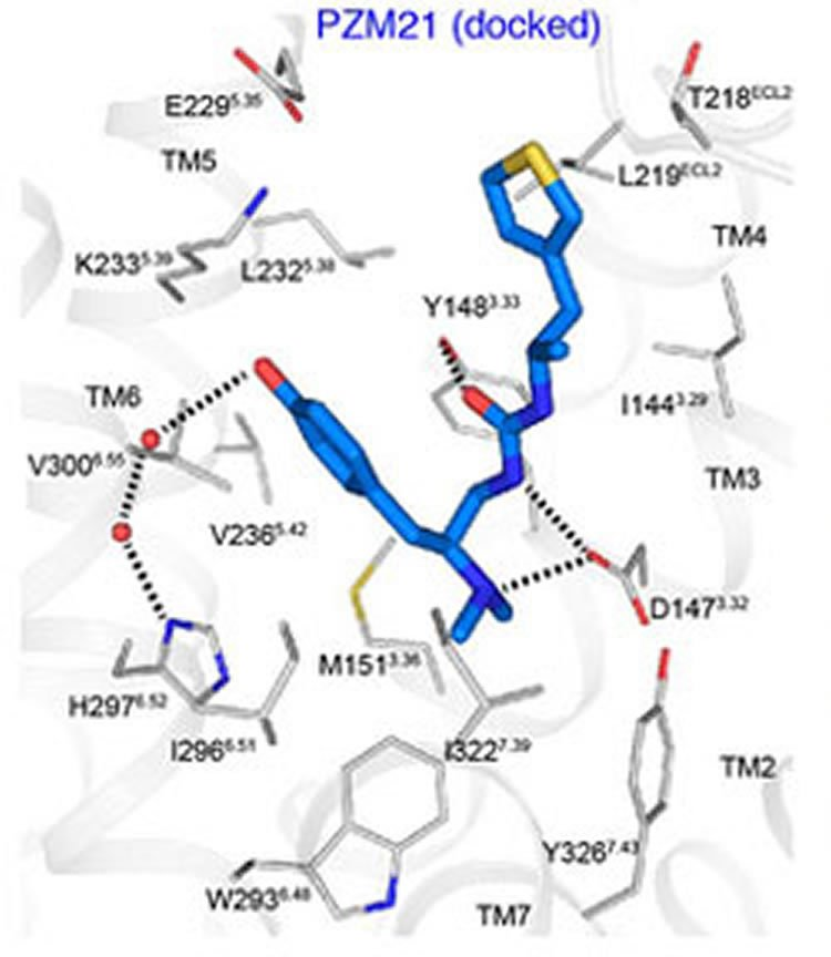 Image shows synthesized analgesic compound PZM 21.