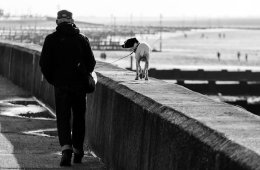 Image shows an old man walking a dog.