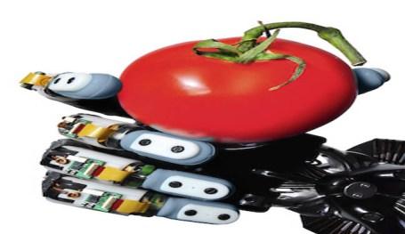 A robot hand grasping a tomato