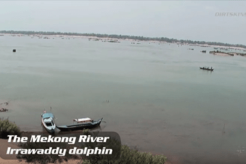 Cambodia   Fresh Water Dolphins   Never Stop Riding   YouTube
