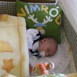 Nimród baba békés álma a párnájával :-)