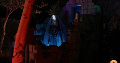 A Mournful Bride in Black lurks in Mourning Rose Cemetery