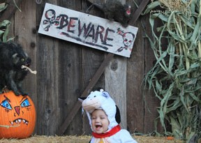 Old Pasadena Halloween baby