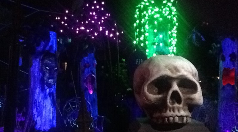 Spider-Lights: Skull and Spooky Trees