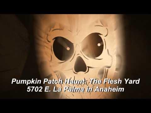 Halloween Haunt Odyseey 2015: Perdition Home & The Flesh Yard