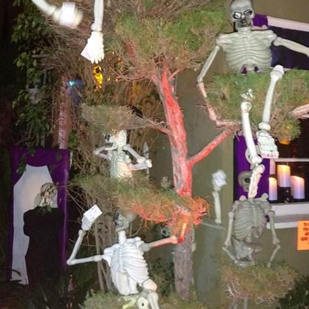 boney-island-2016-skeletons-in-bush
