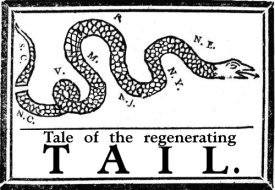 Tale of regenerating tail