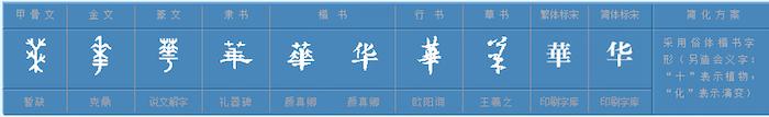 「華」字的各種演變。 圖片來源:象形字典