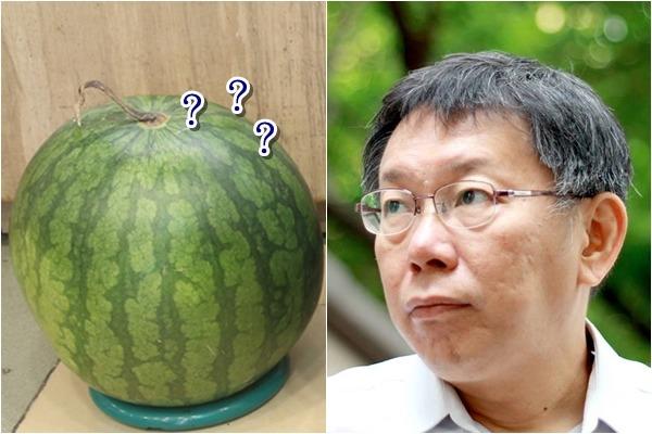 近來柯文哲被鄉民稱做西瓜。 圖片來源:中國經濟日報