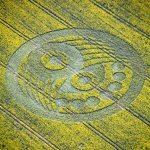 Old Sarum38 150x150 First U.K. Crop Circle of the Year