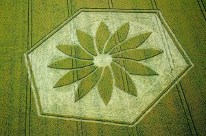 Yatesbury2012 300x199 Latest Crop Circle from the U.K.