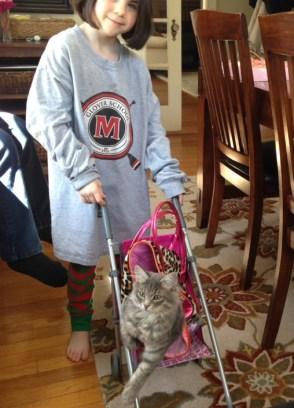 Moby as a kitten