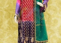Moods And Shade Exclusive Party Wear Dress Collection 2014-15 (1)