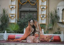 Teena by Hina Butt Party Wear New Year Dresses 2014 For Women (1)