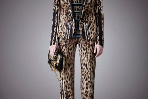 Roberto Cavalli Pre-fall Collection 2014