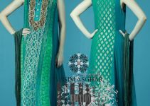 Vasim Asghar Hottest Eid Release 2014 For Ladies (2)