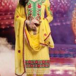 Bollywood Star Evelyn Sharma Churidar Suit Collection 2014