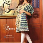 Attractive Sahil Kurti Selection For Big Eid 2014 (5)