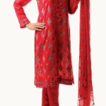 Bareeze Modern Excellent Winter Suits 2014-15 Collection (2)
