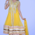 Lovely Festival Fashionable Anarkali Outfits Variety 2014 For Females (4)