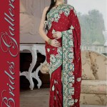 Bridal and Wedding Sarees Collection 2014-15 2