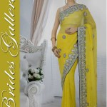 Bridal and Wedding Sarees Collection 2014-15 3