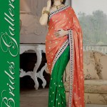 Bridal and Wedding Sarees Collection 2014-15 7
