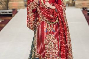 Sanz Cute Bridal Volume 4 Garments Design For Ladies (4)