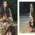 Firdous Pashmina Collection 2014-15 2