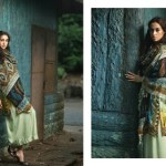 Firdous Pashmina Collection 2014-15 3