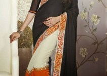 Lovely Evening Wear Saree Collection 2014-15 3