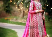 Most Recent Pakistani Beautiful Wedding Clothes UK For Females 2014-15 (2)