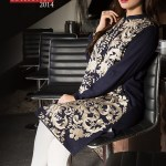 Origins - Ready to Wear winter dresses 2014-15 6