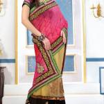 Outstanding Evening Wear Sarees Collection 2014-15 10