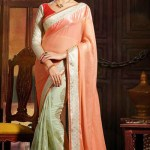 Kaneesha Function Lovely Sarees Collection 2014-15 (6)