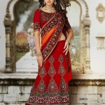 Wedding Wear Lehenga Sarees 8