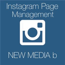 Instagram Page Management