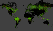 21st-Century Forest Cover Change