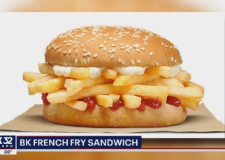 burger-king-french-fry-sandwich