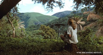 Jane Goodall on Forests #2: Lessons on Appreciation and Protection