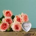 valentines blog banner