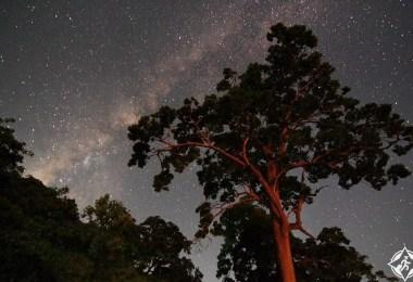 الليل فى جزر اندامان ونيكوبار بعيدا عن الحشود وأضواء المدينة