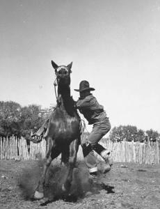 Cowboy mounting horse