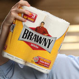 news-website-bed-koch-brothers-toilet-brawny