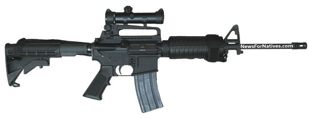AR-15 Police Tactical Assault Weapon