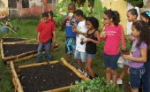 The Saving vacant lots, participatory installation of ecological community gardens&quot; is one of the seven selected projects to receive Ford environmental grants.