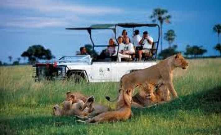 Zimbabwe's national parks