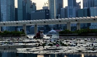 A general view of the financial district skyline is reflected in a pond in Singapore on March 6, 2014 in Singapore. Singapore played down a global survey showing that it is now the world's most expensive city, a finding which has triggered outrage among Singaporeans struggling with rising costs. AFP PHOTO / ROSLAN RAHMAN