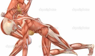 depositphotos_2885085-Female-Human-Body-Anatomy-Street-Fight