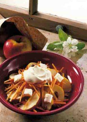 Lecker und gesund: Apfel-Möhren-Rohkost.  Foto: Wirths PR